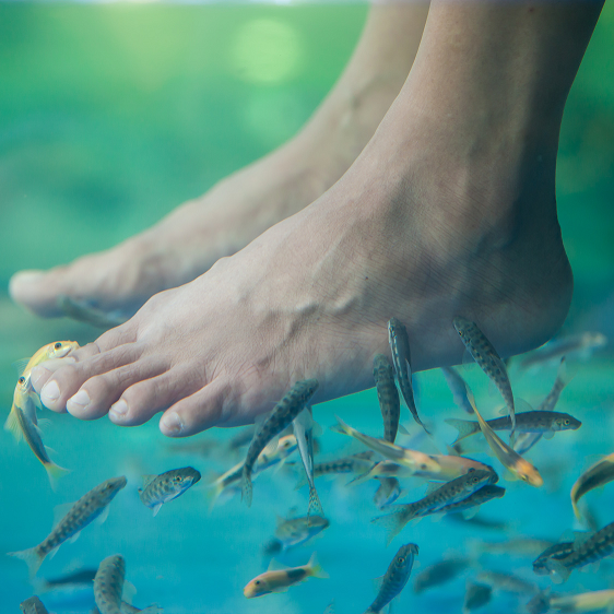 Fiskespa - hele kroppen – Århus