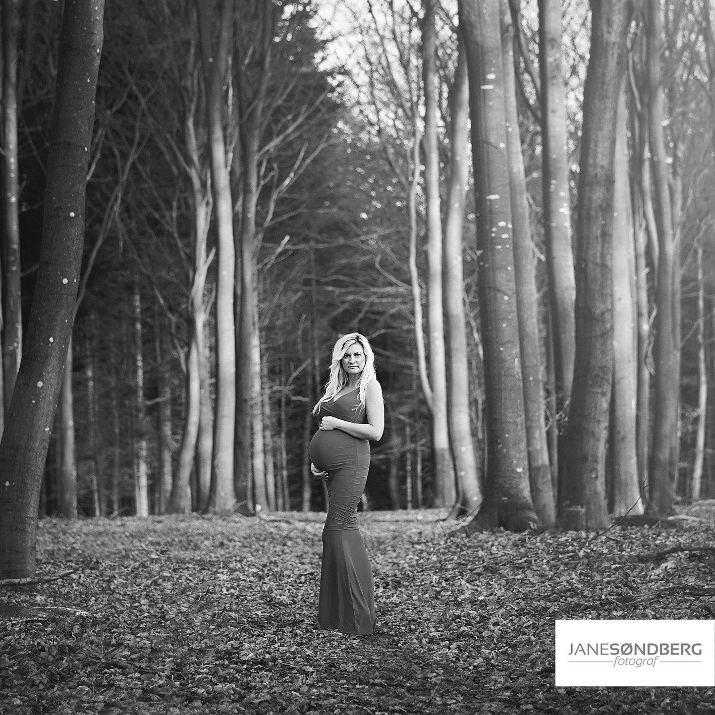 Gravid fotografering i det fri - Hammel