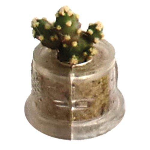 Nøglering med plante indeni
