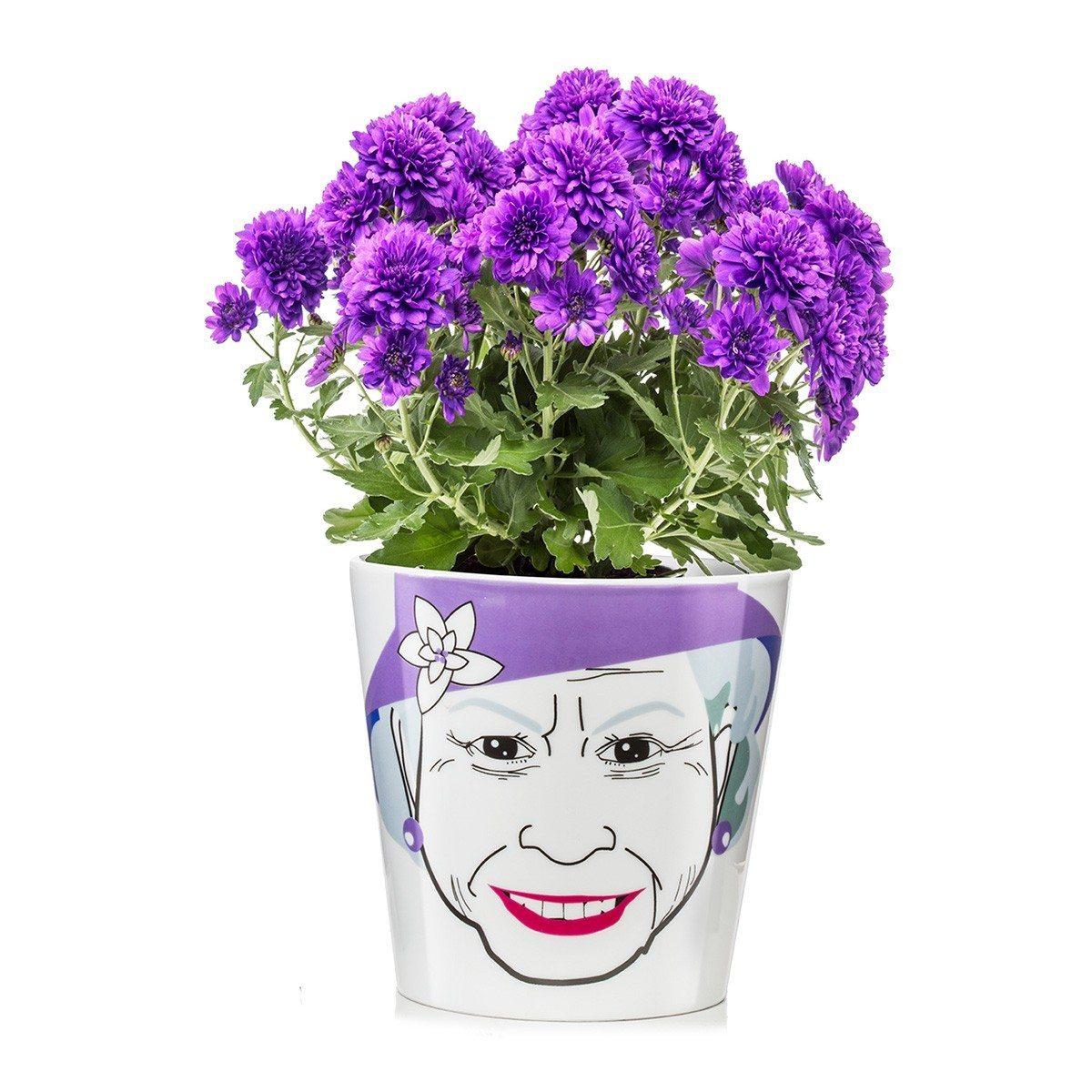 Sjove blomsterkrukker