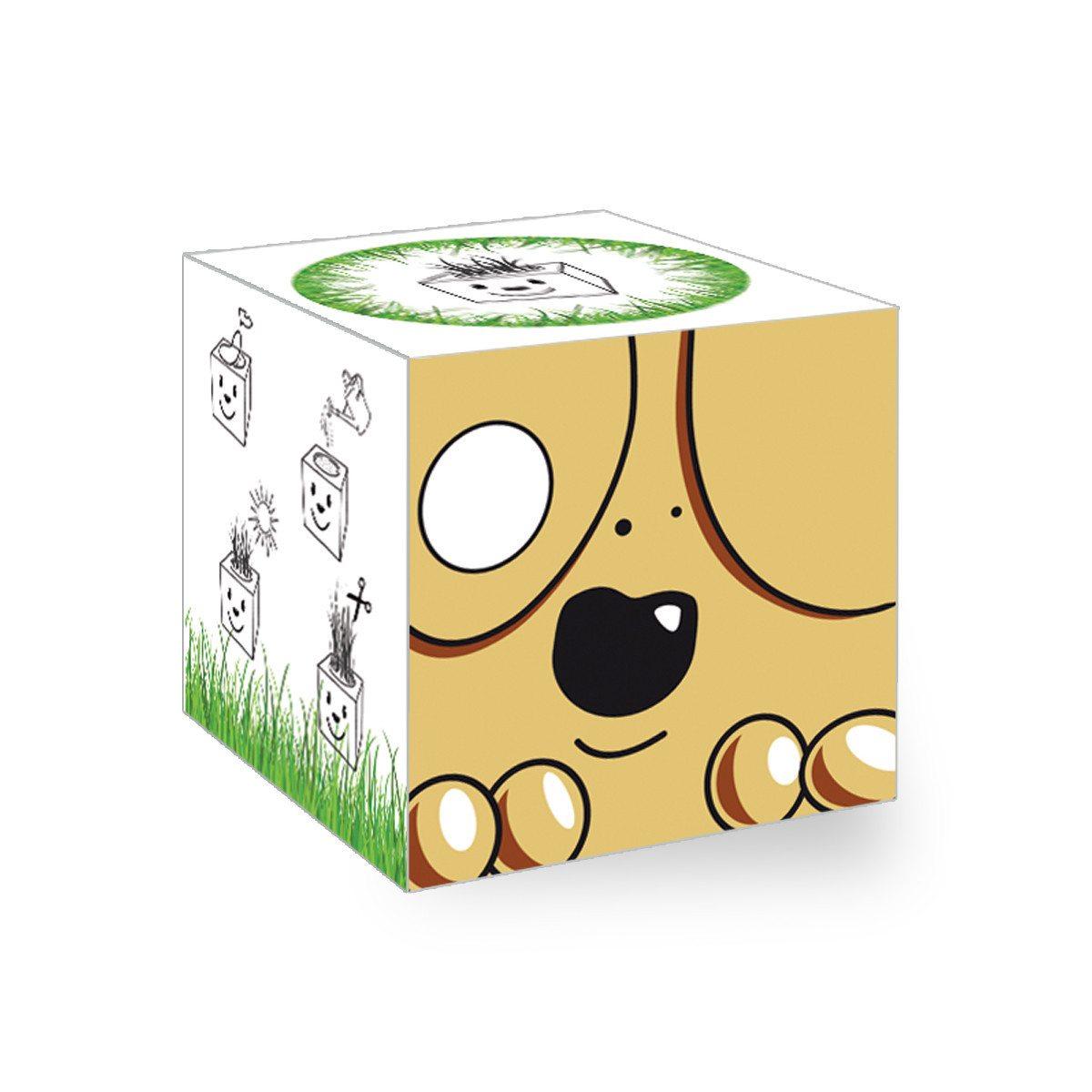 GrassCube - hund