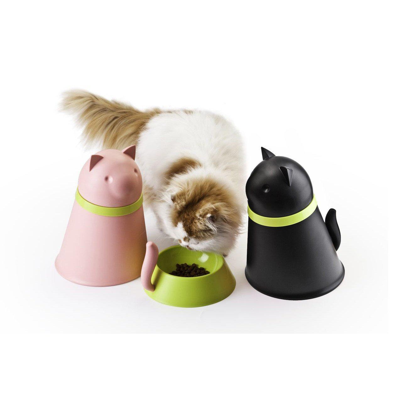 Kitti - katteskål