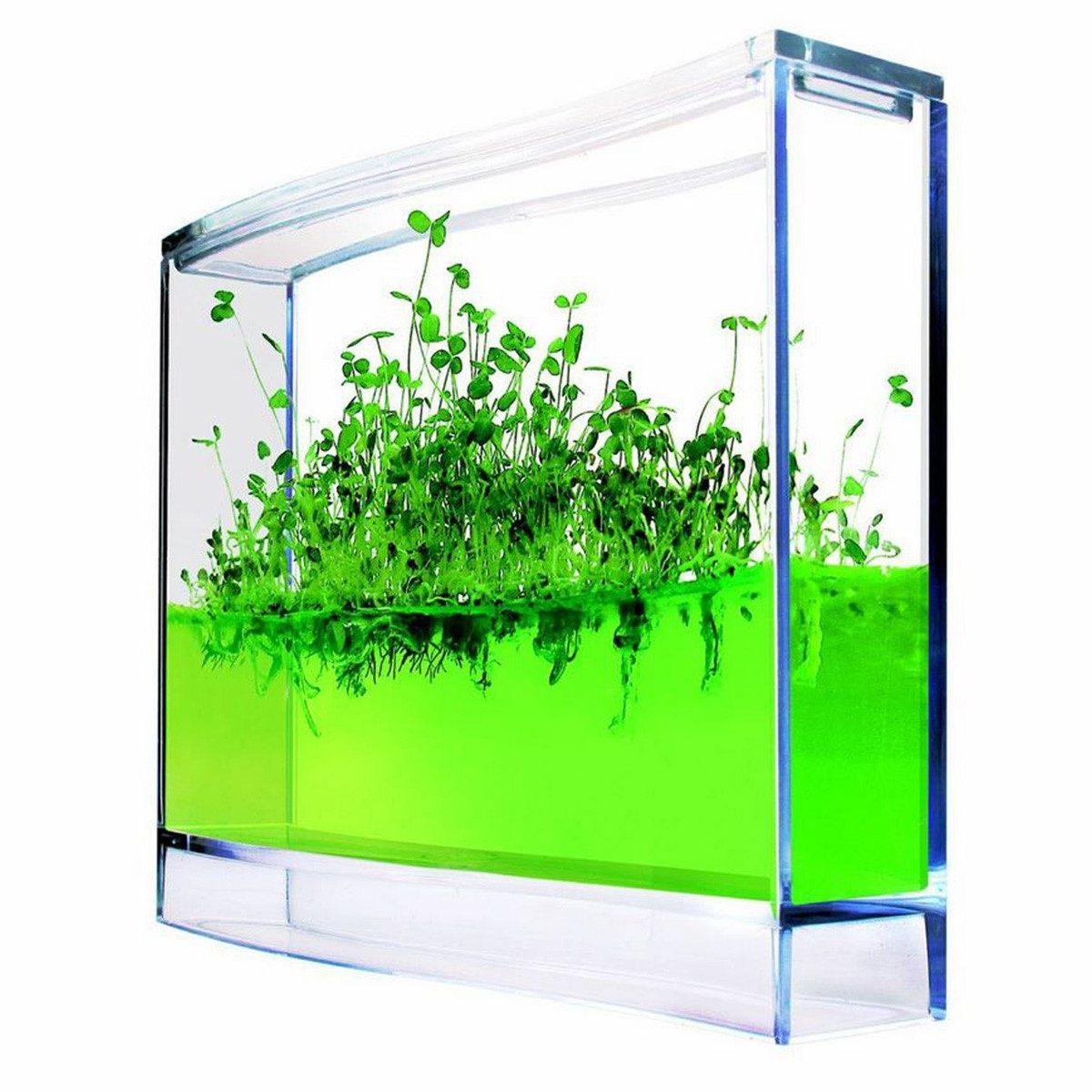 Mini drivhus med nærende gel