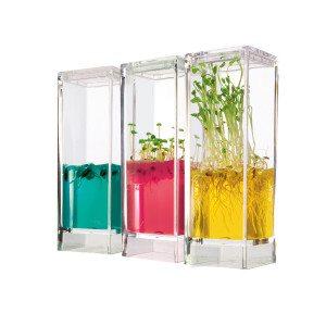 Pflanzenlabor mit Nährgel