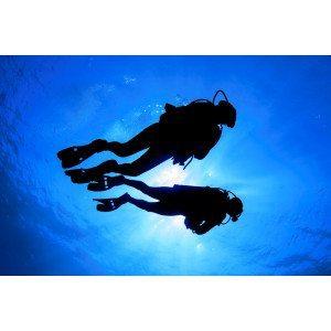 SDI Open Water vinter dykkerkursus for 1 person - uden certificeringer og kursusmateriale  - Frederiksberg