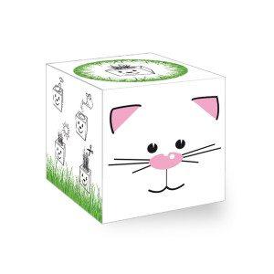 GrassCube - kat