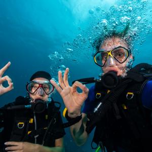 SDI Open Water sommer dykkerkursus for 1 person  - Frederiksberg