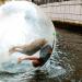 Waterballz - Horsens